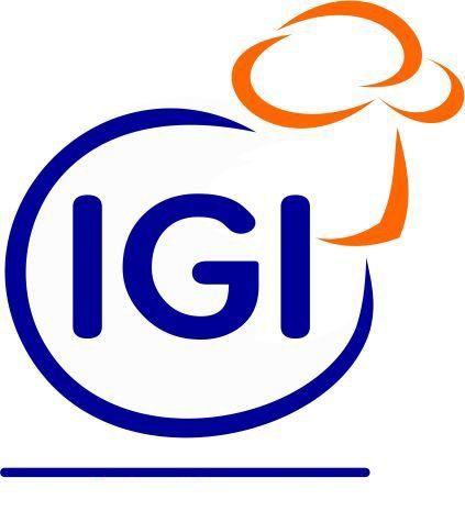 igi_face-1280w